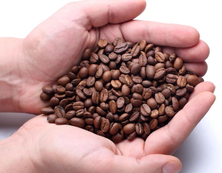 咖啡代加工